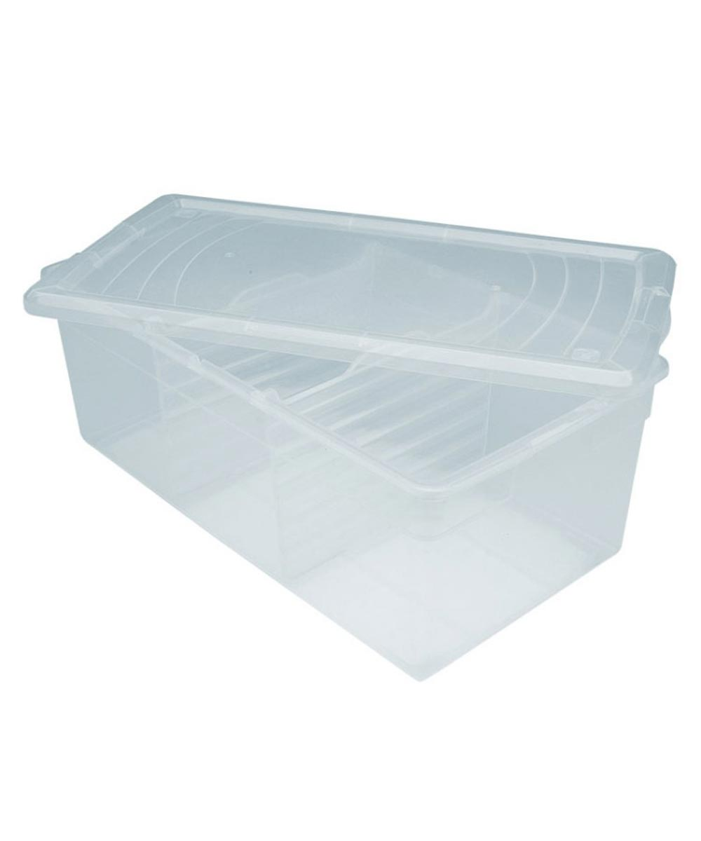 Divided Media Storage Box, Clear
