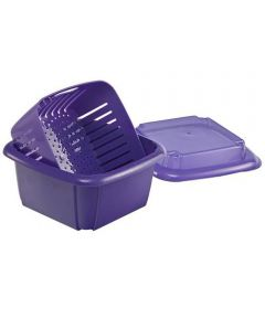 Multi-Functional 3-in-1 Berry Box, Assorted Colors