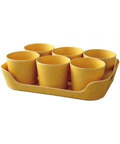 Simple Eco-Planter Herb Pot with Tray Set of 6, Yellow